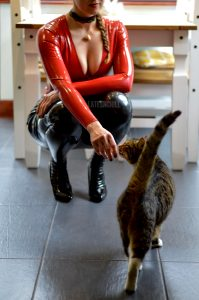 Latex In The Kitchen ❤️🐈⬛