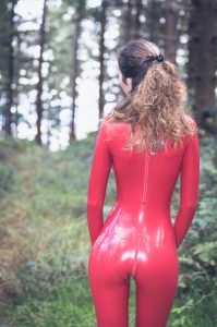 Red In The Forest